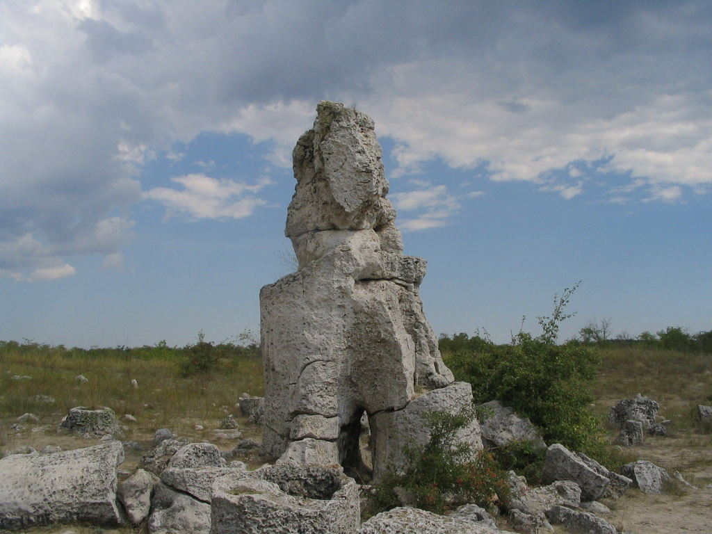 Fossil forest bulgaria 1