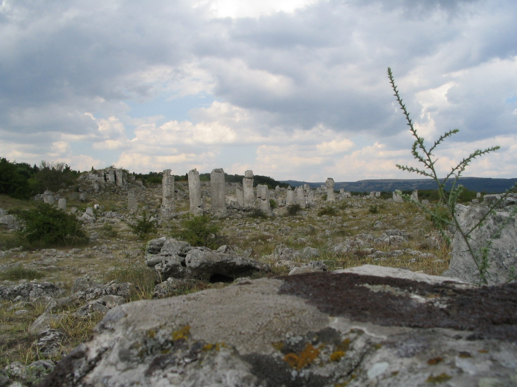 Fossil forest bulgaria
